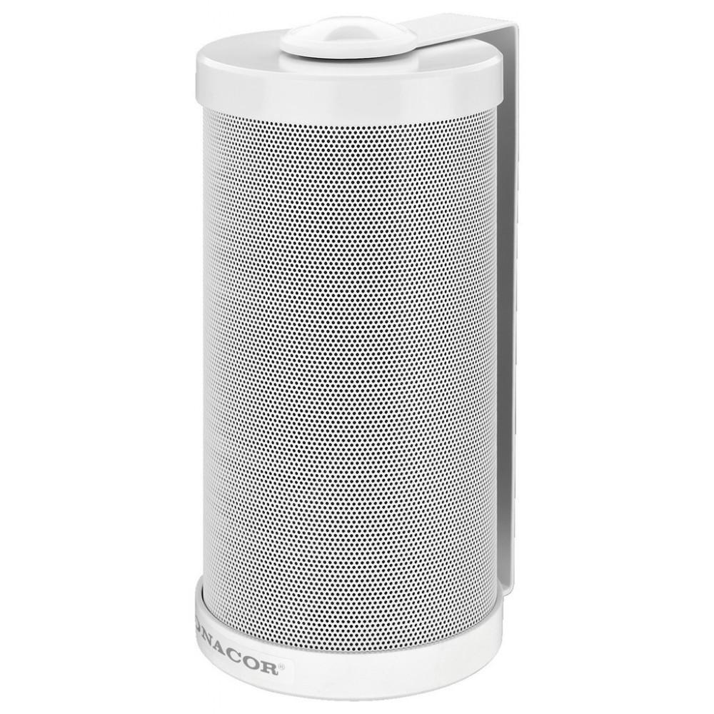 ESP-315/WS 2-way PA wall-mount speaker system