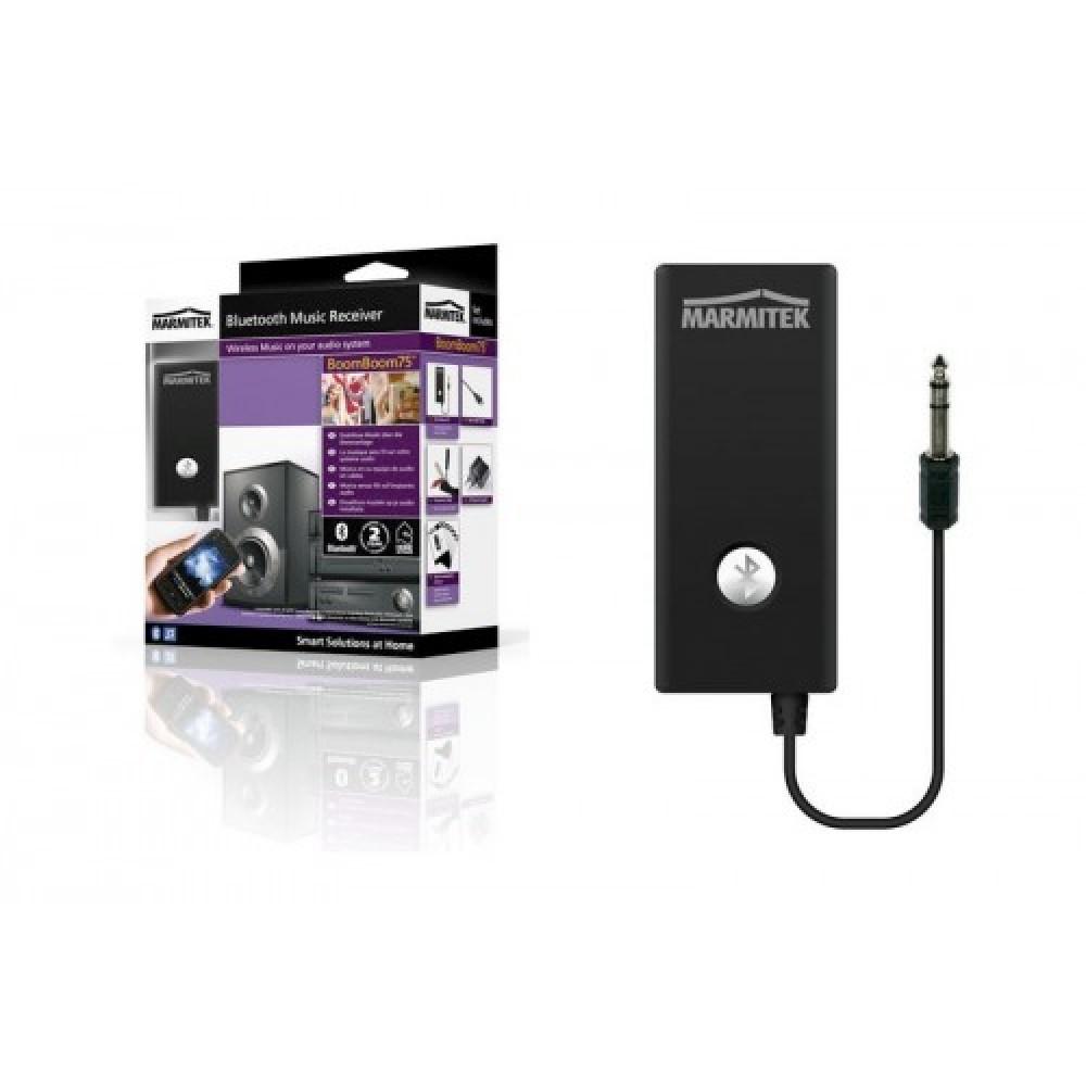 Bluetooth AUX pranus i muzikes